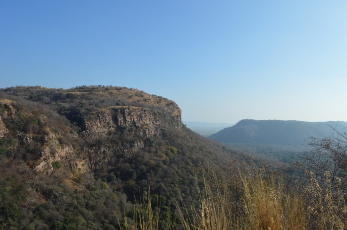 4.1485624960.ranthambore-national-park