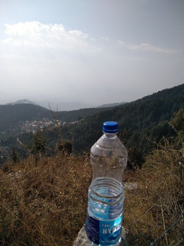 Triund Trek ka saathi