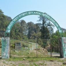 Khaliya Top Gate