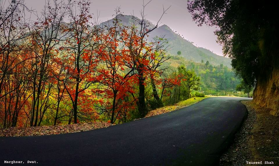 Marghuzar Valley