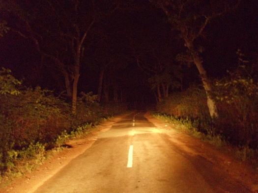 Lulusar Dudipastar National park night