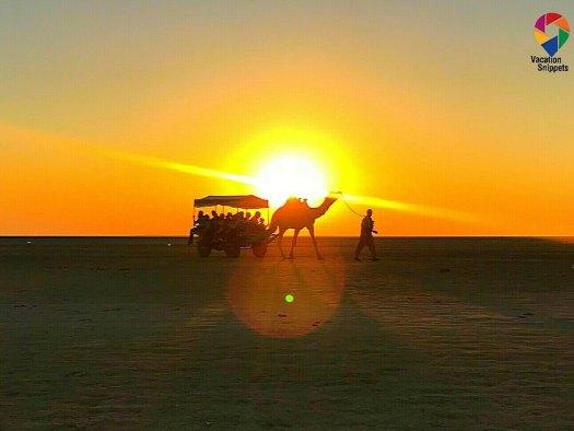 Camel ride at Rann of Kutch, Gujarat