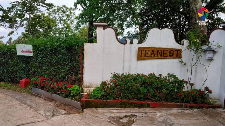 teanest gate